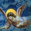 REPORTE HOLISTICO SEMANAL DEL 23 AL 29 DE ABRIL