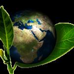 Cómo El Cambio Climático Afectará La Alimentación En El Planeta