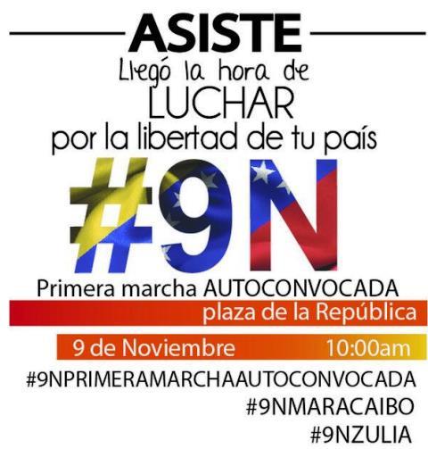 AsisteaLamarcha.Nov9.2013